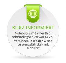Notebooks mit einer Bildschirmdiagonalen von 14 Zoll verbinden Mobilität mit kompromissloser Leistungsfähigkeit.