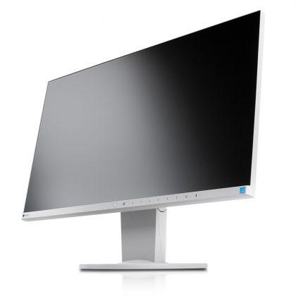 Zwei dieser Monitore an einem Computer bilden einen sehr modernen und effektiven Arbeitsplatz.
