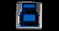 USB Typ B Anschluss an einem Drucker . die großen Varianten von USB-B sind weitgehend verschwunden